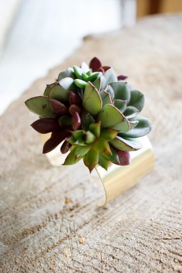 Living plant jewelry | Succulent bracelet by Tobey Nelson Events | image by E Wandres