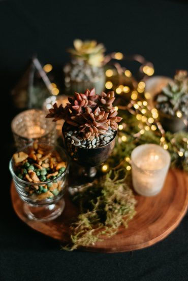 Mixed sedum centerpiece with fairy lights, moss, and wood slice