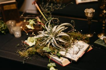 air plants, moss and pitcher plants growing out of old book