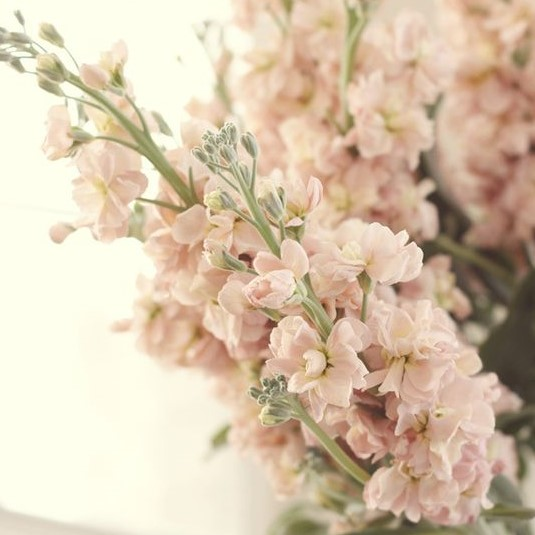 Wedding Flowers For Summer: Tobey Nelson Weddings + Events