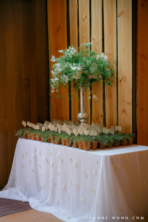 Save money on your wedding with these flower and decor tips: https://tinyurl.com/htyb669