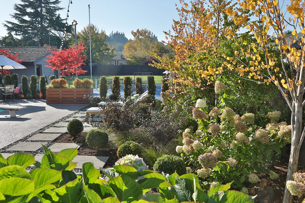 Garden with flowers, trees, patio and sport court