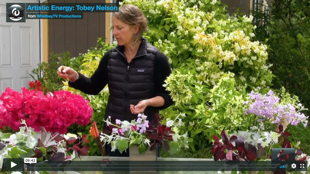 Whidbey Island Florist Tobey Nelson was featured on Whidbey TV Artistic Energy Series