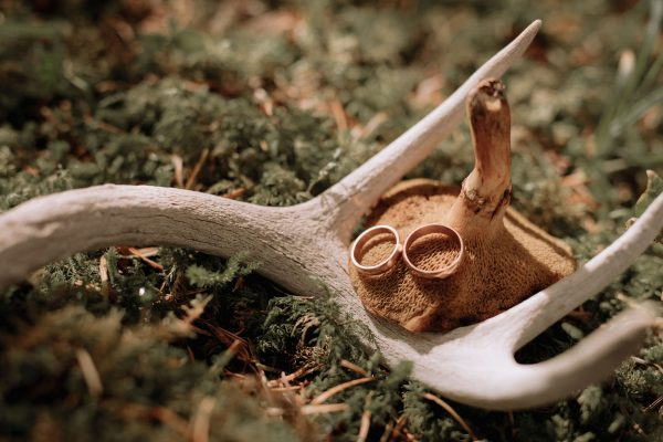 Ring detail with antler and mushroom from PNW Wedding
